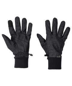 "Herren Handschuhe ""Winter Travel"""