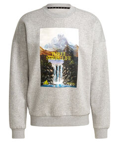"Herren Sweatshirt ""Mountain Graphic"""