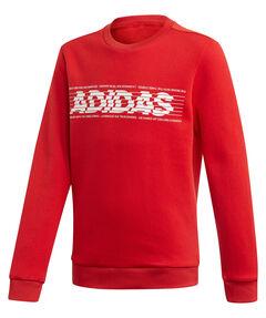 "Jungen Sweatshirt ""YB Sid BR Crew 2"""