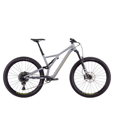 "Specialized - Herren Mountainbike ""Stumpjumper Expert Carbon 29"""