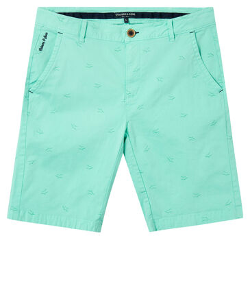 """Colours & Sons - Herren Shorts """"Channing"""""""