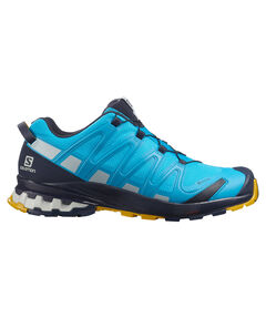 "Herren Trailrunning-Schuhe""XA PRO 3D V8 GORE-TEX"""