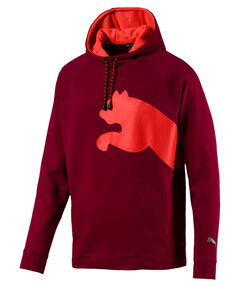 "Herren Sweatshirt mit Kapuze ""Cat Sweat Hoodie"""