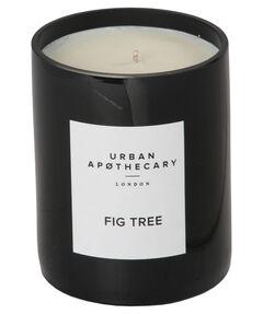 """entspr. 183 Euro / 1000 g - Inhalt: 300 g Duftkerze """"Fig Tree"""""""